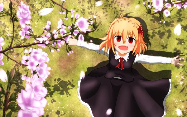 東方 桜とルーミアイラスト 壁紙